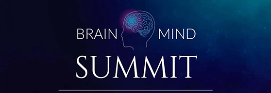 Brain Mind Summit 2019 Logo